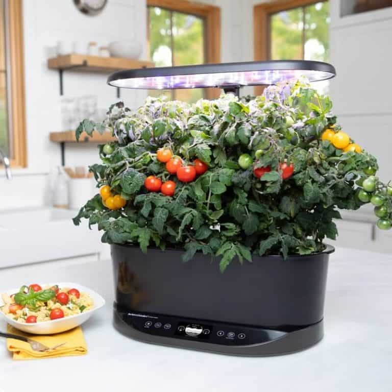 How Does the Aerogarden Work?: The Science Behind the Magic