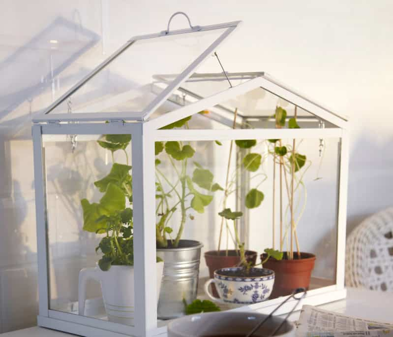 An Indoor Greenhouse For Your Apartment, How To Turn Your Basement Into A Greenhouse